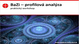 BAZI profilová analýza - praktický workshop
