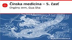 Čínska medicína a akupunktúra bez ihličiek 5