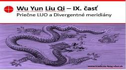 Wu Yun Liu Qi 9